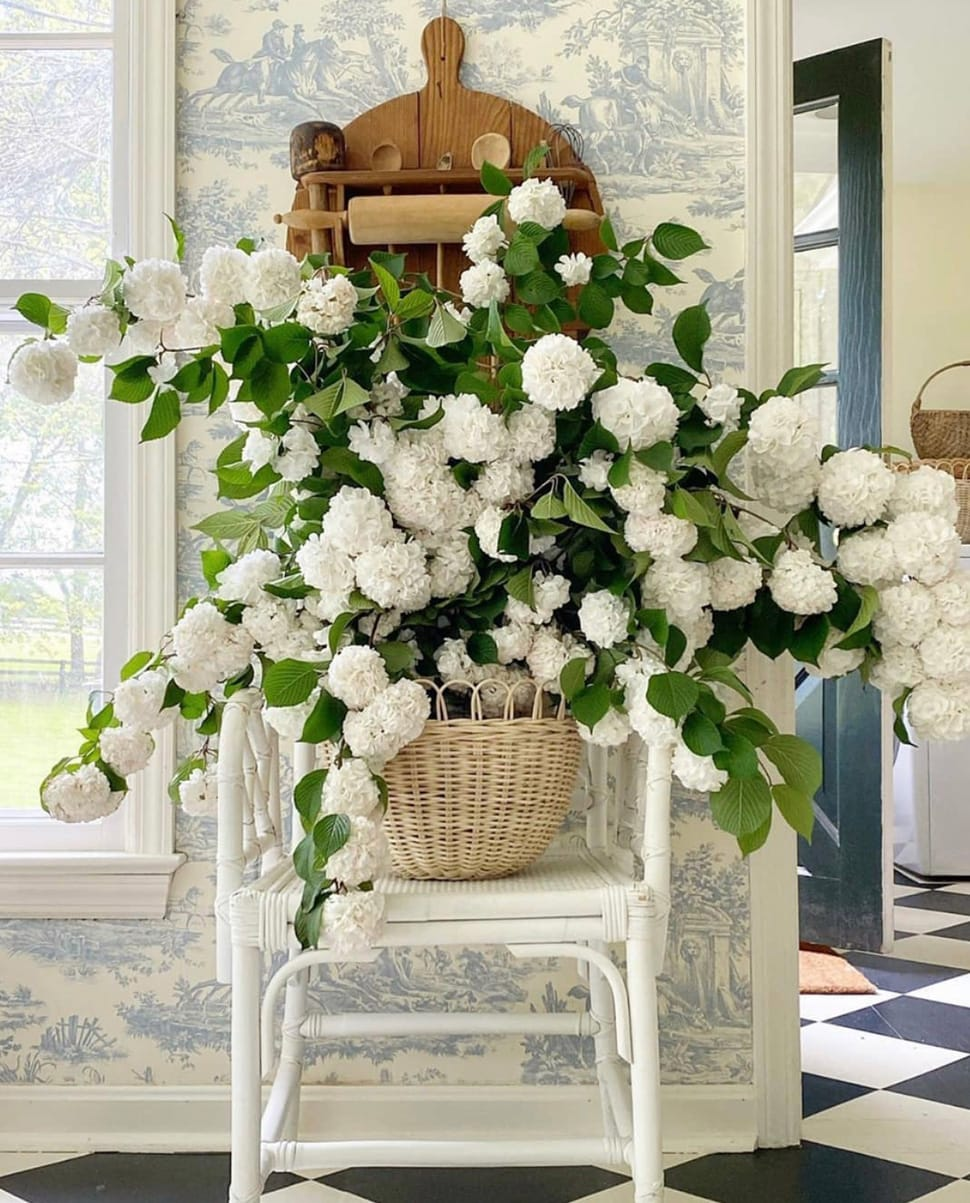 Hydrangea flowers on a chair featured in the Atlas Concorde USA blog from Schumacher